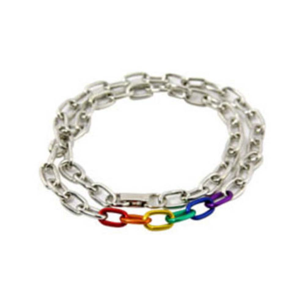 Gaysentials Rainbow and Silver Link Necklace - View #1