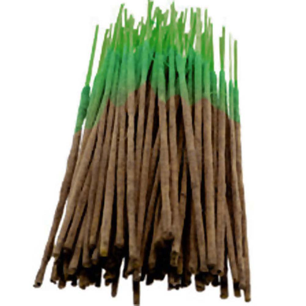 Wild Berry Incense Evergreen 100 Sticks Count Bundle - View #1
