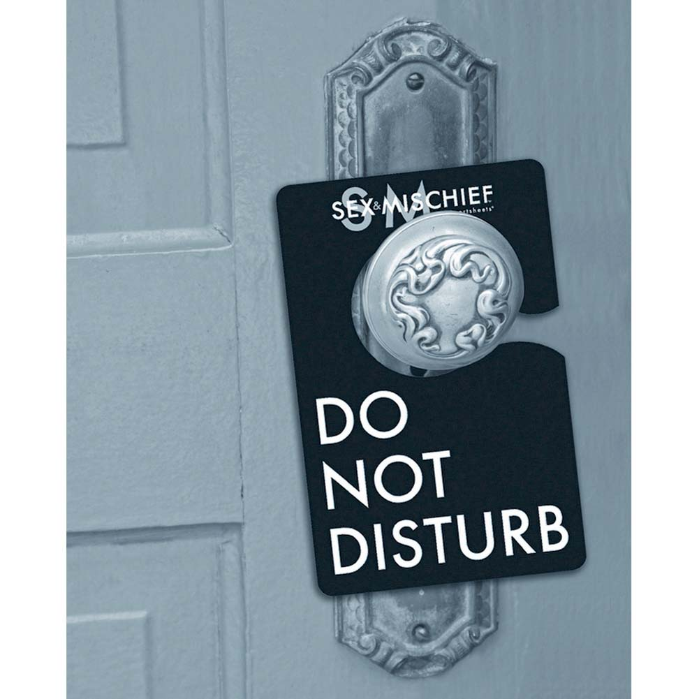 Flirt Do Not Disturb Kit for Kinky Lovers - View #2