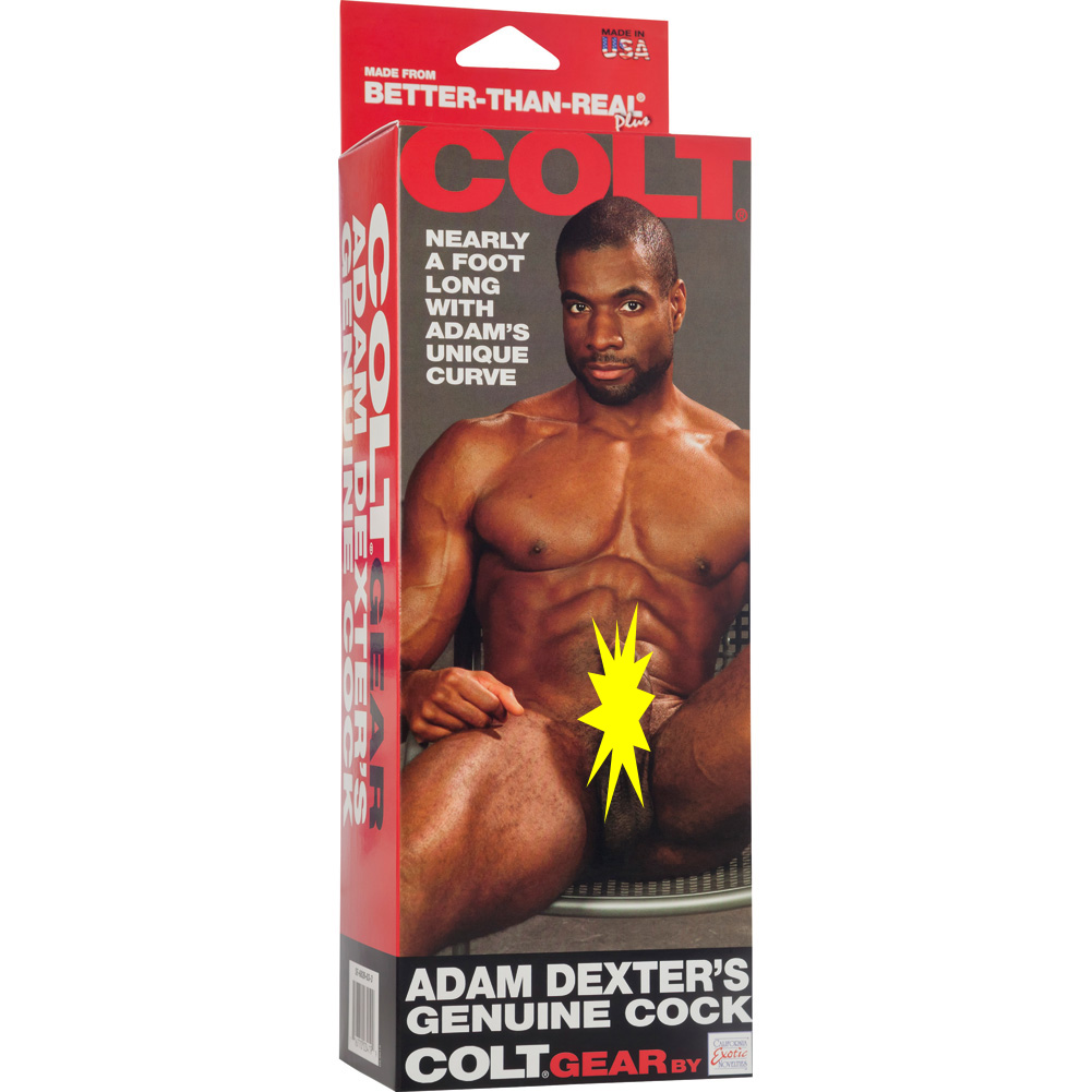 "California Exotics COLT Adam Dexters Cock with Balls 11.5"" Ebony - View #4"