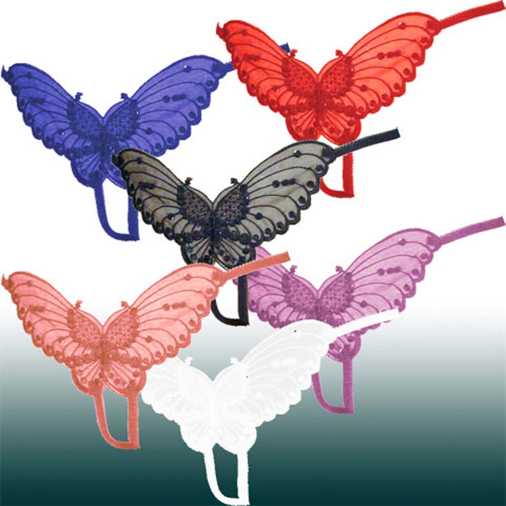 Sheer Butterfly Crotchless Panties PLUS Size Assorted Colors Pack of 12 - View #1