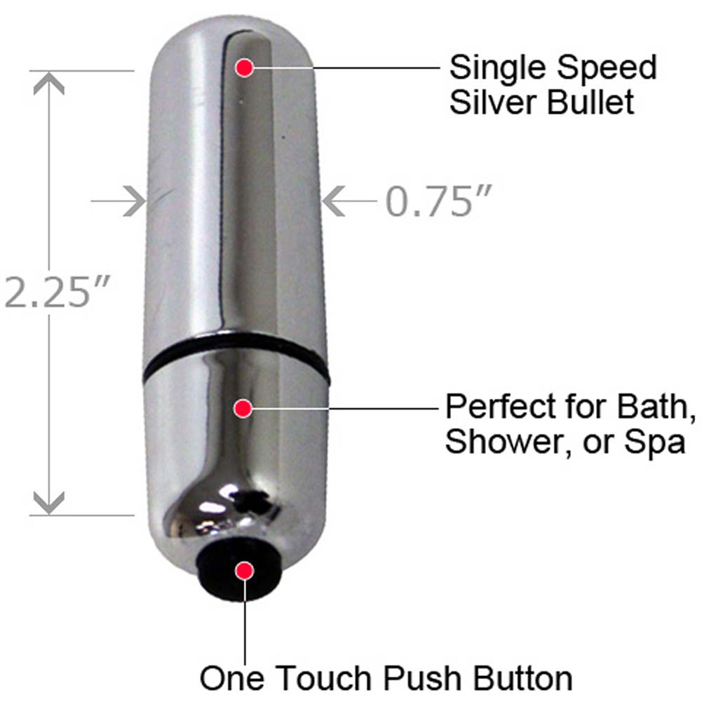 Best Friend Forever Waterproof Vibrating Bullet Silver - View #1