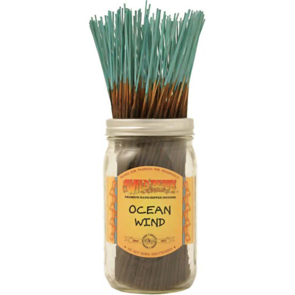 Wildberry Incense 100 Count Ocean Wind - View #1