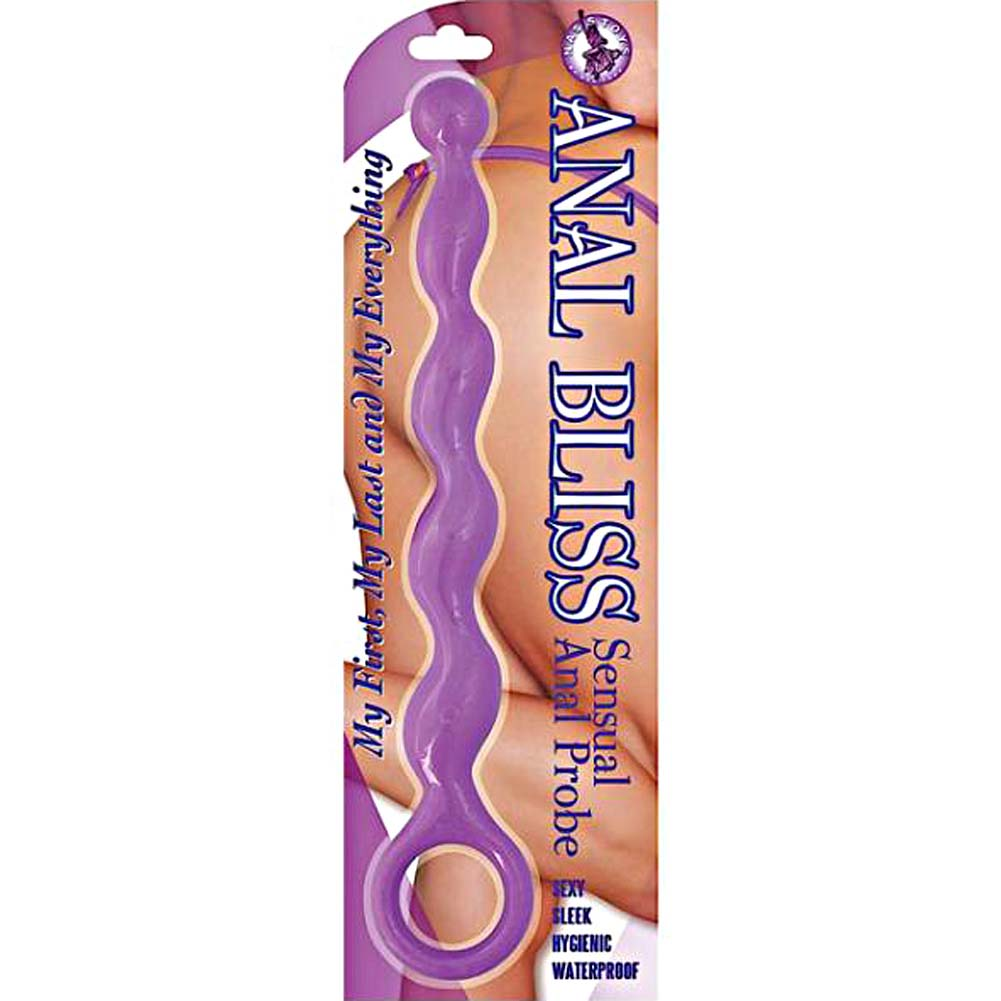 "Nasstoys Anal Bliss Sensual Anal Probe 8"" Purple - View #1"