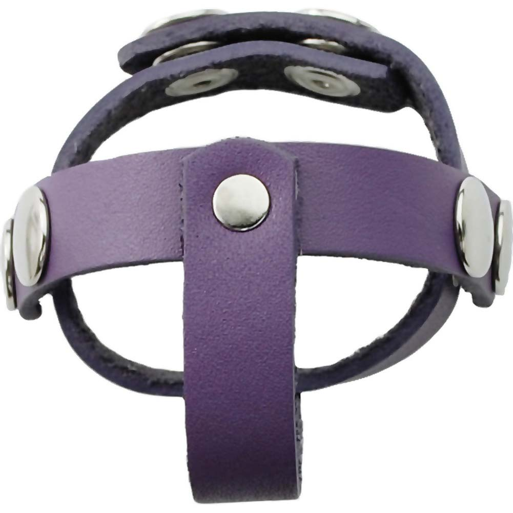 Spartacus Crave T Style Leather Ball Divider Violet - View #1