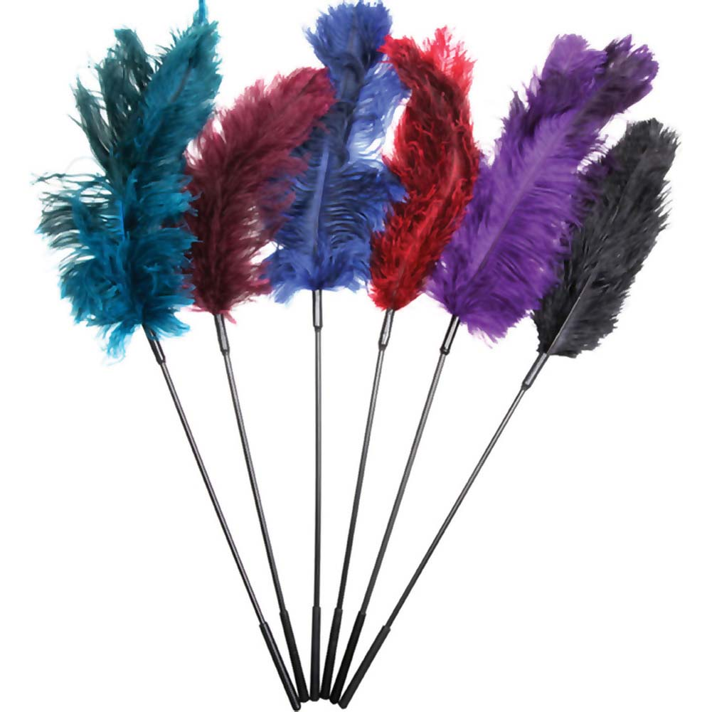 Sportsheets Ostrich Feather Tickler Combination of 6 Assorted Colors - View #1